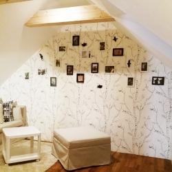 Dívčí pokoj v podkroví Frýdek-Místek | PO